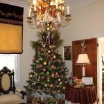 2011_Christmas Pic_IMG_0389-1